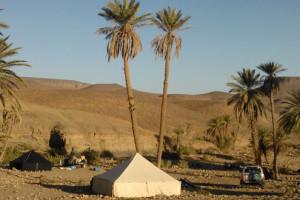 oasis-camp